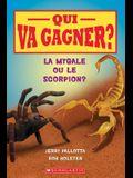 Qui Va Gagner? La Mygale Ou Le Scorpion?