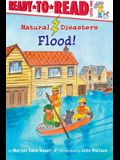 Flood!: Ready-To-Read Level 1
