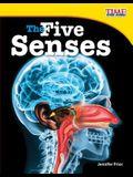 The Five Senses (Fluent Plus)
