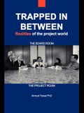 Trapped in Between: Realities of the Project World