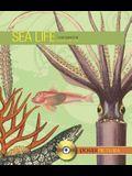 Sea Life [With CDROM]