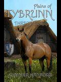 Plains of Tybrunn