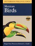 A Field Guide to Mexican Birds: Mexico, Guatemala, Belize, El Salvador