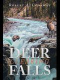 Deer Clearing Falls