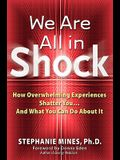 We Are All in Shock: How Overwhelming Experiences Shatter You and What You Can Do about It