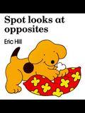 Spot Looks at Opposites