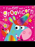 If You Ever Meet a Groovicorn