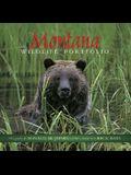 Montana Wildlife Portfolio