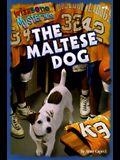 The Maltese Dog