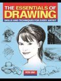 The Essentials of Drawing