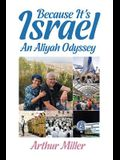 Because It's Israel: An Aliyah Odyssey