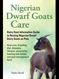 Nigerian Dwarf Goats Care: Dairy Goat Information Guide to Raising Nigerian Dwarf Dairy Goats as Pets. Goat Care, Breeding, Diet, Diseases, Lifes