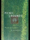 Picnic Grounds: A Novel in Fragments