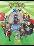 Pokémon X-Y, Vol. 12, Volume 12