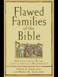 Flawed Families of the Bible: How God's Grace Works Through Imperfect Relationships
