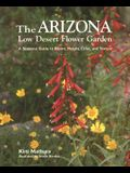 The Arizona Low Desert Flower Garden: A Seasonal Guide to Bloom, Height, Color, and Texture