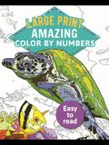 Amazing Color-By-Numbers Large Print