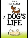 A Dog's Life, Poetry by Jan Garrod