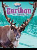 Caribou: And Reindeer, Too