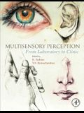 Multisensory Perception: From Laboratory to Clinic