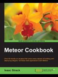 Meteor Web Application Development Cookbook