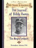 My Name Is America: The Journal Of Biddy Owens, Birmingham, Alabama, 1948