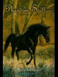 The Challenger (Phantom Stallion #6)