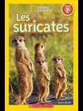 National Geographic Kids: Les Suricates (Niveau 2)