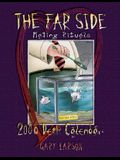 The Far Side Mating Rituals 2006 Desk Calendar