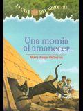 Una Momia al Amanecer = Mummies in the Morning