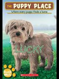 Lucky (the Puppy Place #15), 15