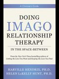 Doing Imago Relationship Therapy in the Space-Between: A Clinician's Guide