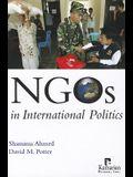 Ngos Internat Politics PB