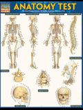 Anatomy Test Reference Guide (8.5 X 11): For Use with Anatomy Reference Guide (9781423222781)