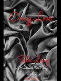 Crazy Love: A Brush with Fate Book 2