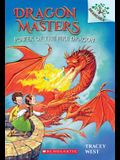 Power of the Fire Dragon: Branches Book (Dragon Masters #4), Volume 4
