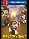 PAW Patrol Deluxe Step into Reading (PAW Patrol)