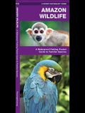Amazon Wildlife: A Waterproof Pocket Guide to Familiar Species