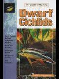 Dwarf Cichlids: Keeping and Breeding Them in Captivity