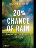 20% Chance of Rain: Exploring the Concept of Risk