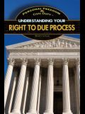 Understanding Your Right to Due Process