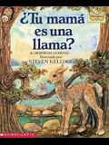 ¿Tu Mamá Es Una Llama? (Is Your Mama a Llama?)