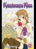 Kamisama Kiss, Volume 12