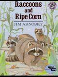Raccoons and Ripe Corn