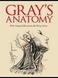 Gray's Anatomy: Slip-Case Edition