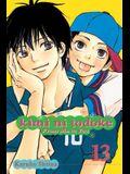 Kimi Ni Todoke: From Me to You, Vol. 13, 13