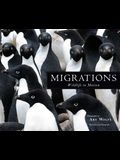 Migrations: Wildlife in Motion