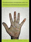 Consideraciones Conceptuales Sobre Los Sistemas de Informacion Geografica