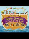 Lift-The-Flap Surprise Bible Stories