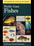 A Field Guide to Pacific Coast Fishes: North America